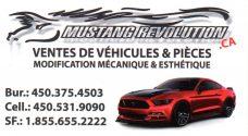 Mustang Revolution